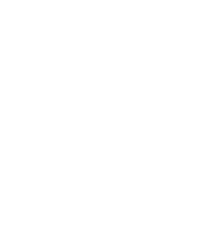 mass casualty incident logo